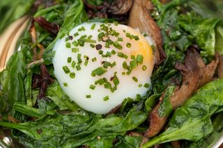 Slowly Poached Egg, English Muffin, Sauteed Spinach, Mushrooms